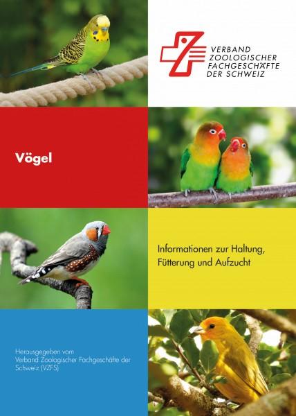 Tierbroschüre Vögel