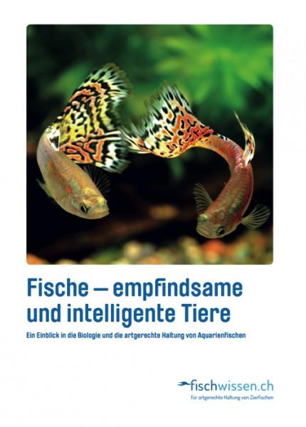 Broschure Fischwissen